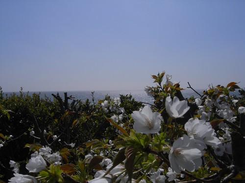 本州最南端「潮岬」@和歌山県串本町-06