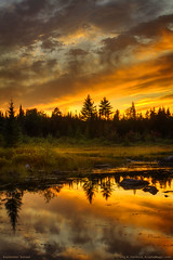 Sunset in Maine Wilderness (Greg from Maine) Tags: sunset sky reflection clouds landscape maine scenic wilderness bog hdr breathtaking piscataquis anawesomeshot piscataquiscounty shirleymills breathtakinggoldaward platinumpeaceaward shirleymillsmaine breathtakinghalloffame