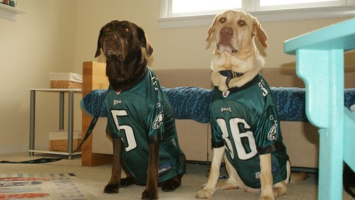 Eagles jerseys