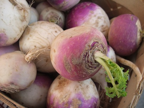 Turnips from Persinger Farms