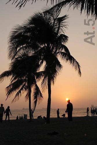 光的表情0083(夏威夷風情)DSC_6739.jpg