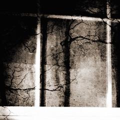 looking inside (kittykatfish) Tags: texture window scary creepy tired layers twice thisishowifeel redo photoshoppedagain