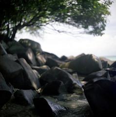 (*YIP*) Tags: travel trees sea sky 120 6x6 film beach water mediumformat square bay coast asia southeastasia malaysia langtengahisland tropics clearsky southchinasea terengganu kiev60 fujicolor pro160s malaypeninsula epsonv500 yipchoonhong