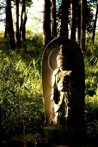 Takao Shrine / 高尾神社 (by Mullenkedheim)