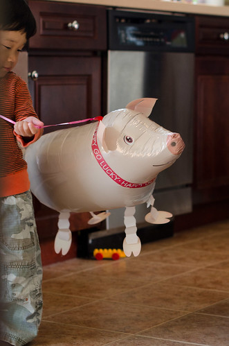 pigs-fly-2