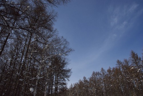 20090118季節風