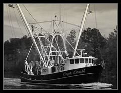 Capt Cecil (sailingmorgans) Tags: ocean boat fishing ray steel northcarolina coastal nautical morgan nets trawler rigging shrimpboat workingboat adamscreek commercialboat captcecil