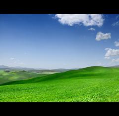 (VEMB) Tags: italy italia tuscany toscana d300 veronicamaglione
