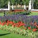 London - England Study Abroad
