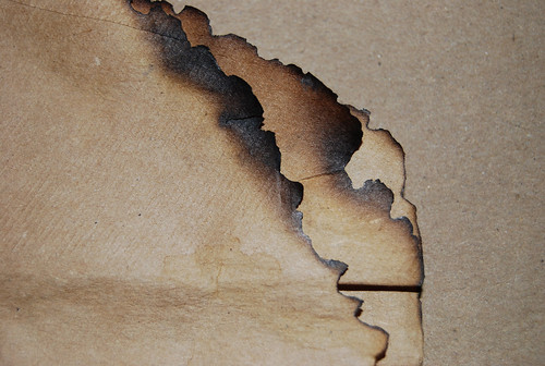 Burnt Paper Texture 03