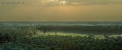 (aZ-Saudi) Tags: sky panorama color nature nikon arabic oasis saudi arabia d200 ksa alhasa      arabin arabs