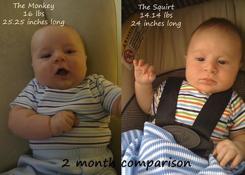 2 month compare