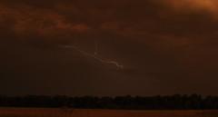 Lightning, Sugar Land, TX. (David Sledge) Tags: sky storm field weather electric night clouds bolt electricity lightning sugarland cloudtoground cloudtocloud davidsledge