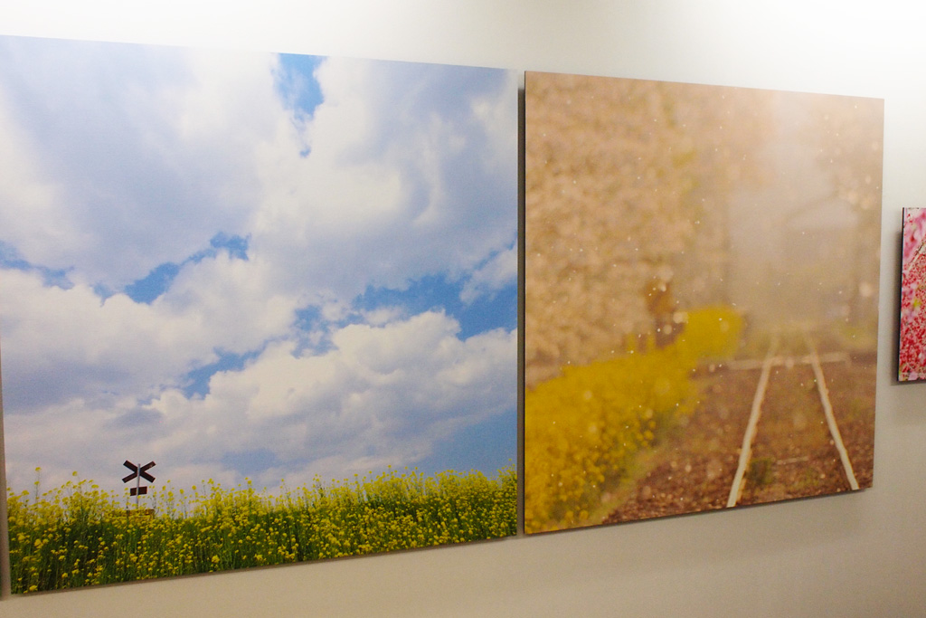 Seiya Nakai's photograph exhibition@Umeda, Osaka 1