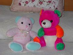 Dos osos especiales