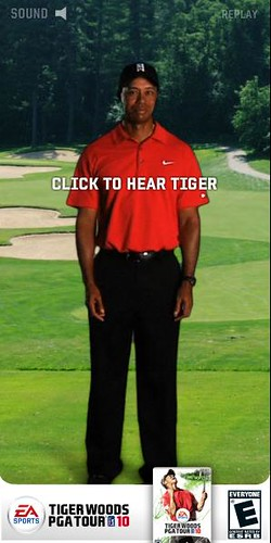你拍攝的 tiger1。