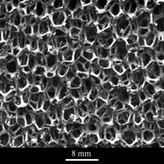 Open-celled aluminium foam (CORE-Materials) Tags: metal cell foam investment casting aluminium alloy micrograph universityofcambridge compositematerial ukoer doitpoms corematerials aluminiumfoam compositefoam