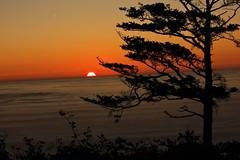 Sunset (ScenicScapes) Tags: color beautiful beauty scenery colorful scenic scenics cartwright photoscenics