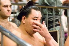 日馬富士 画像57
