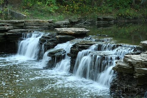 Waterfall Glen Oct2009 004 web