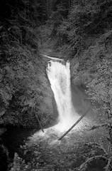 Lower Butte Creek Falls (david.davis) Tags: trix400 buttecreekfalls