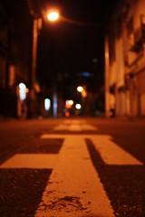 IMG_4987.JPG改