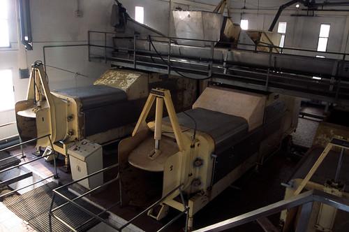 Máquinas de procesado de uva en gran empresa - Solana de los Barros, Badajoz