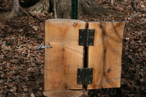 Ryerson Woods 004 (15-Mar)