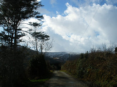 Thursday walk (Lackandarragh, I think) (St.Stello) Tags: ireland pinky cowicklow lackandarragh