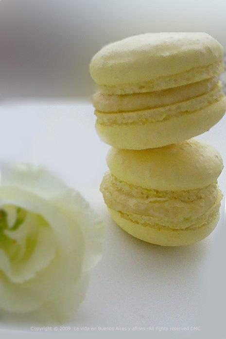 Jasmine , almonds macaroons