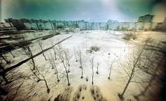Trees and the city (batuda) Tags: city trees winter plate wideangle pinhole 6x9 kaunas glassplate viewsfrommybalcony kalnieciai