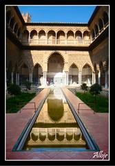 Alcázar de Sevilla (Alberto Jiménez Rey) Tags: españa water reflections de mirror sevilla spain agua monumento cybershot alberto cielo espejo rey alcazar lucia martinez reflejos tapia jimenez dsct200
