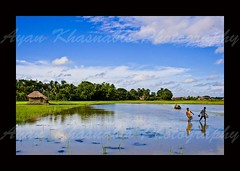 Reflection of life (A y A n) Tags: trip blue sky india west water photography village weekend sunday shoots lovely agriculture kolkata bengal calcutta kws bengali ayan agro khasnabis incrediblebengal