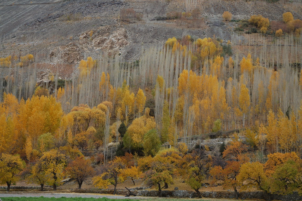 3783345145 dd28de05aa b - Stunning Beauty Of Hunza Valley Pakistan