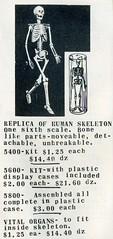 Skeleton Ad