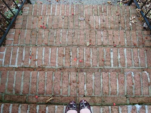 74/365 Steps