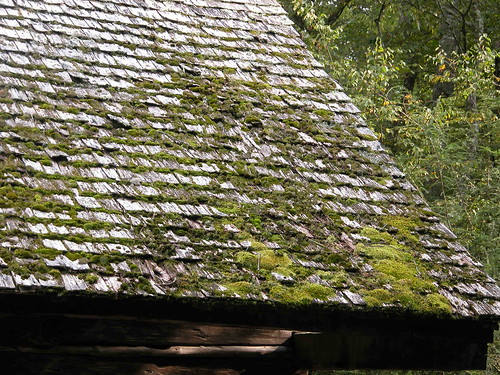 Shake Roof - Cades Cove