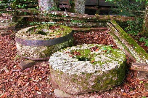 Moss Covered Mill Stones - Cades Cove