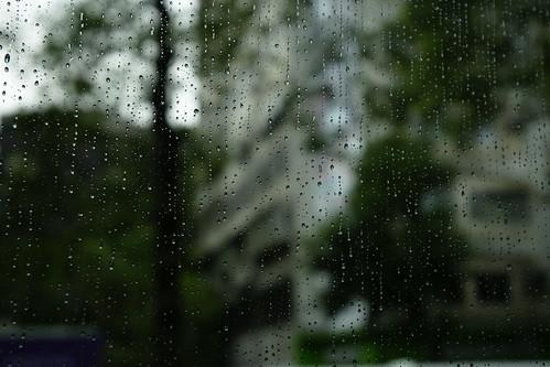 出發前的車窗。早上下起了綿綿陰雨,這倒是SONY外拍活動難得的雨天。