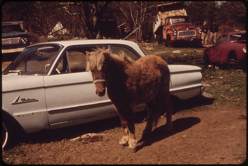 Obsolescence in the Junkyard - Pony or Auto? 04/1973