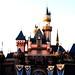 Disney Land mystery