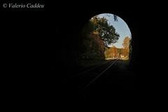 Dopo il Buio... la Luce! (valerius25) Tags: sardegna train canon sardinia railway digitalrebel treno galleria ferrovia isili ferroviedellasardegna 400d valerius25 valeriocaddeu isilisorgono