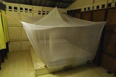 Thai Bed