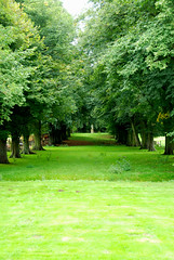 Let's Be Avenue at Hidcote Manor Garden! (antonychammond) Tags: uk trees england green britain gloucestershire avenue potofgold hidcotemanorgarden saveearth anawesomeshot firsttheearth landscapesdreams pathscaminhos flickrlovers kunstplatzlinternational naturescreations