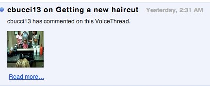 A rude VoiceThread comment
