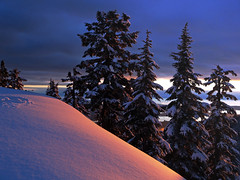 Suicide Sunset (Christopher J. Morley) Tags: blue trees winter sunset mountain snow canada vancouver snowshoe purple beautifullight olympus mount e3 seymour aplusphoto suicidebluffs littlestoriespicswithsoul 100commentgroup artinoneshot vancouverhidingbehind