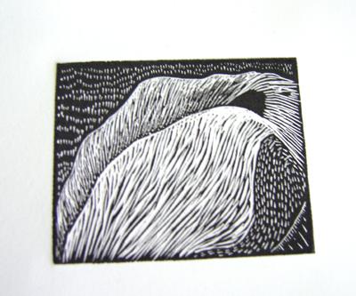 albion print