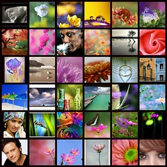 Turquoise's Mosaic - March 15th, 2009 (Turquoise Bleue) Tags: colors march eyes fdsflickrtoys flickr artist mosaic patchwork 2009 regard artiste supershot turquoisesmosaic