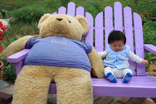 我不要跟大熊坐