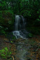 Clara Verner Falls (ALalto) Tags: water rain creek waterfall alabama tuscaloosa fallingwater universityofalabama tuscaloosaalabama alabadrock alalto claravernertowers jackwarnerparkway claravernerfalls